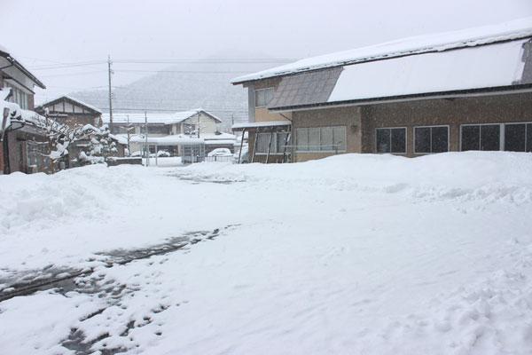 1月26日の事務所玄関から見た会社敷地内の様子
