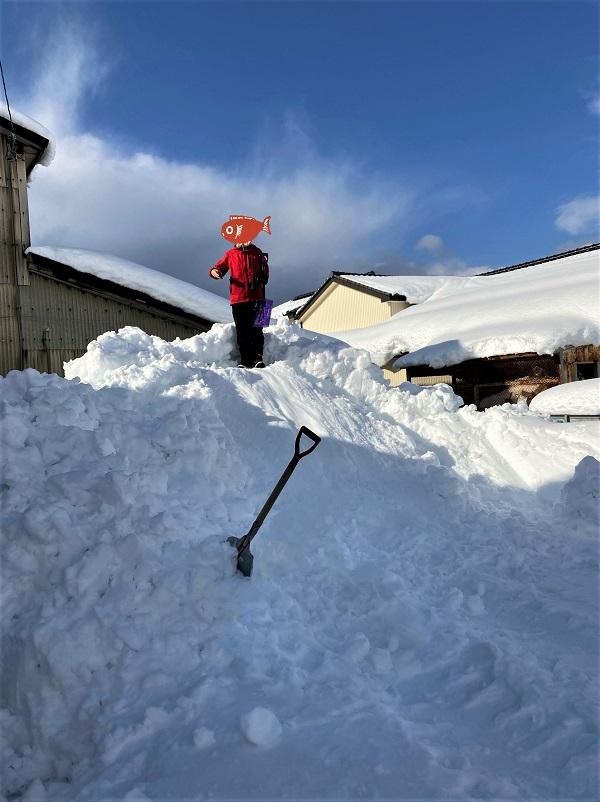 北洋の館の駐車場にも雪の山。こうなったら滑り台しかない。