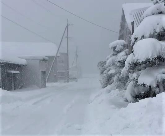 雪の日ですね臨時休業します