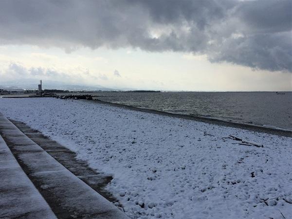 雪の海岸。波打ち際以外は凍っています。