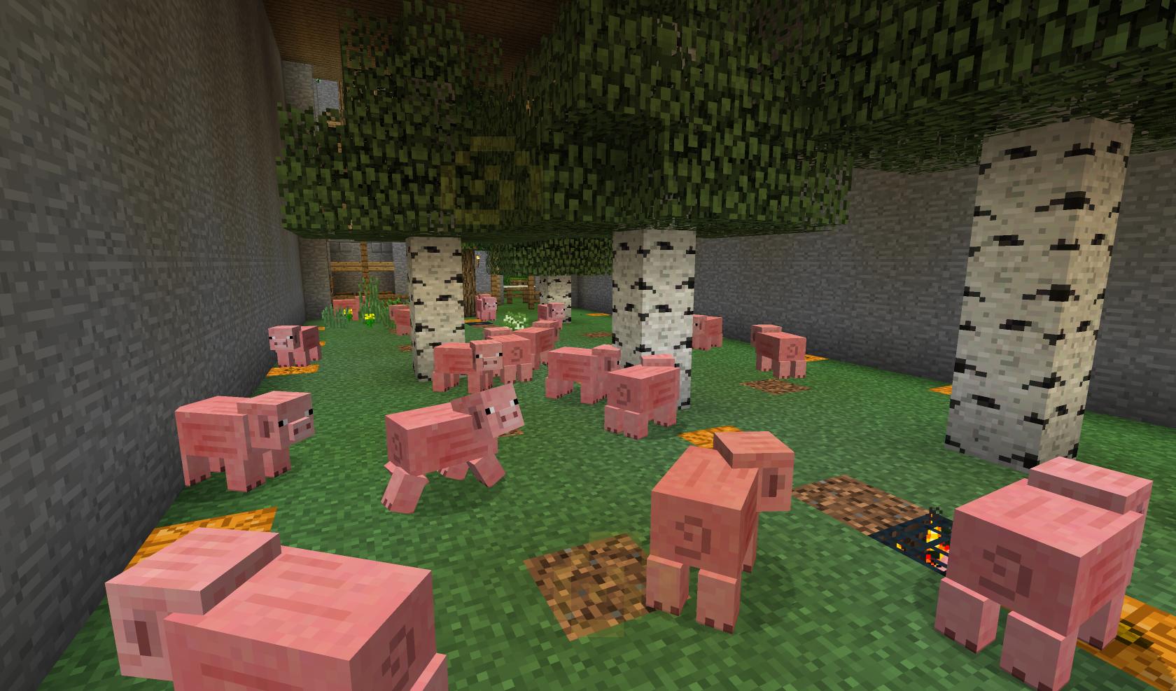 Unsere Baumfarm mit Schweinespawnern