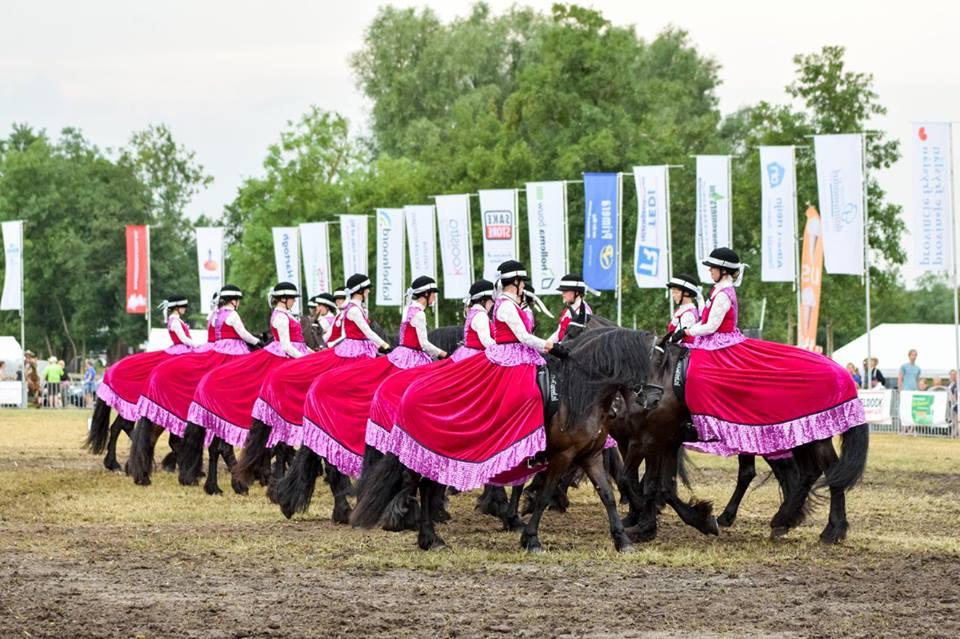Paardendagen Driezum 2018