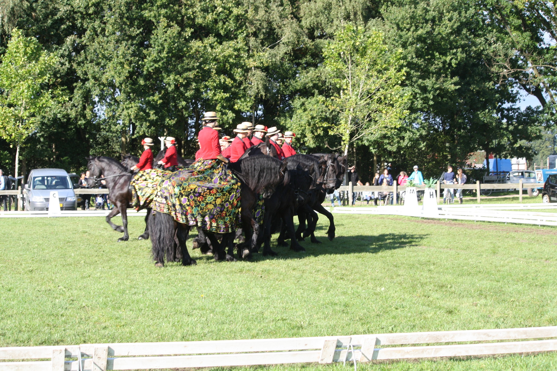 Show Sint Michiels Gestel september 2015