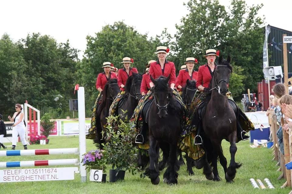 Show Udenhout 2014
