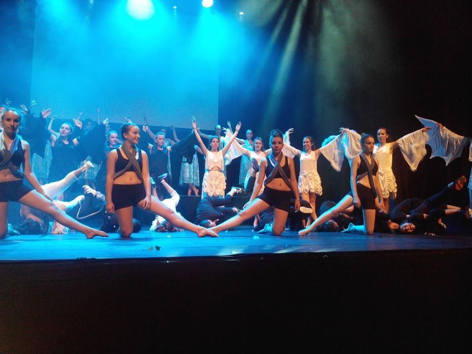 Les cygnes noirs et blancs - gala 2014