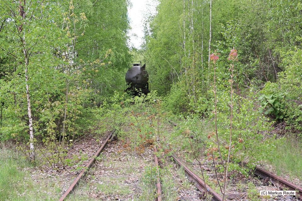 Langelsheim, Gleise der ehemaligen Innerstetalbahn, ein vergessener Kesselwagen liegt hier noch im Dornröschenschlaf