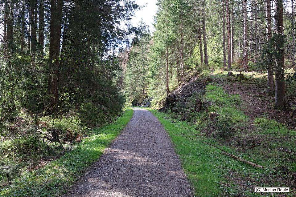 Kleine Wanderung auf der ehemaligen Trasse der Innerstetalbahn zum Hellertal-Viadukt
