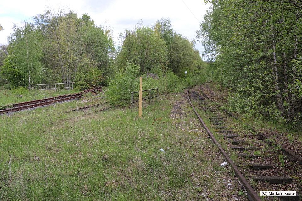 Langelsheim, Gleise der ehemaligen Innerstetalbahn hinter dem Gelände der Rockwood Lithium