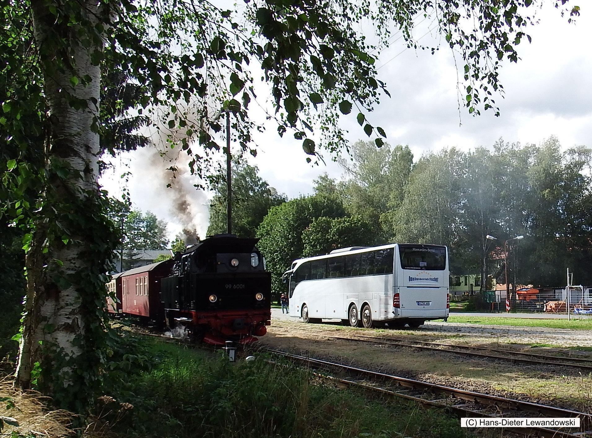 Bus und Bahn im Selketal