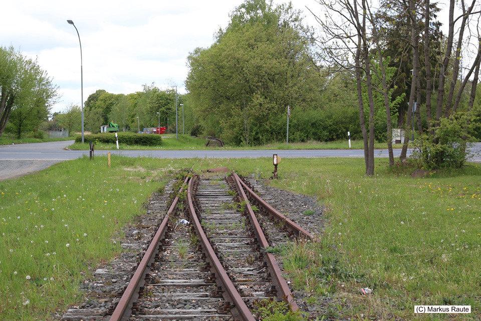 Alte Gleise am ehemaligen Bahnhof Grauhof