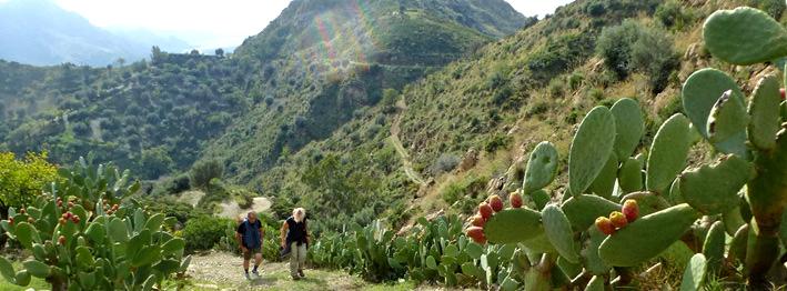 Aspromonte Nationalpark wandern