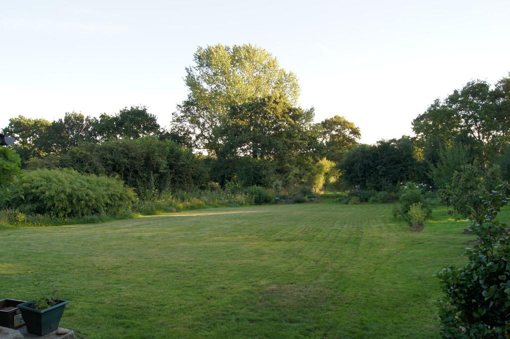 La pelouse.