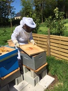 Jean travaillant au rucher.