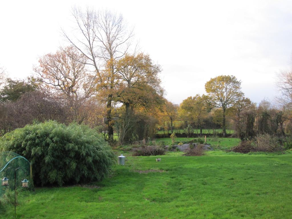 Le jardin au sortir de l'hiver.