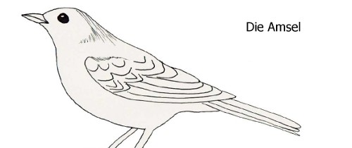 Winter Vögel Malvorlagen Batavusprorace