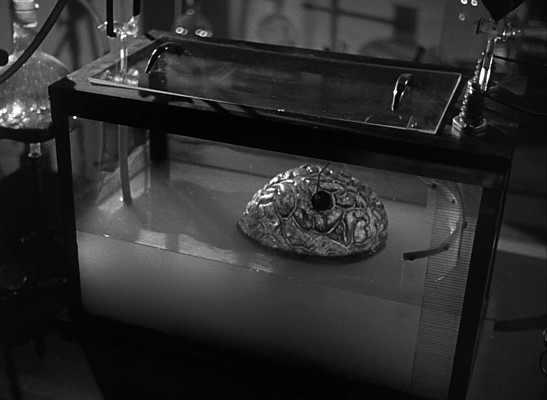"Szenenfoto aus dem Film ""Donovans Hirn"" (Donovan's Brain, USA 1953)"