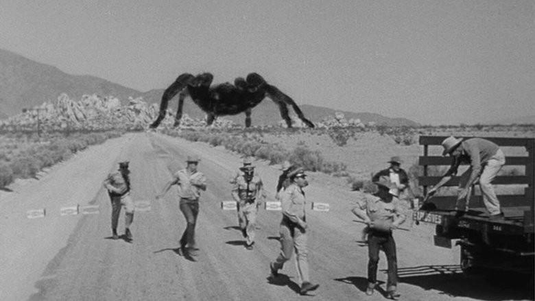 Die Riesenspinne auf einer Landstraße in der Wüste in Tarantula (USA 1955)