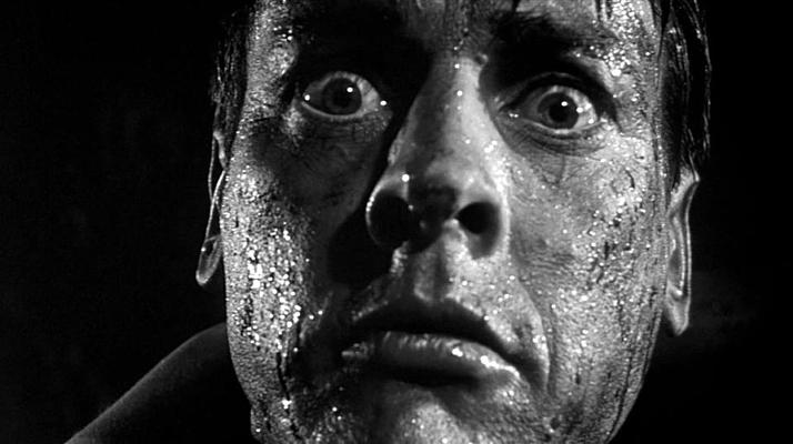 """Szenenfoto aus dem Film """"Die Dämonischen"""" (Invasion of the Body Snatchers, USA 1956) von Don Siegel; Kevin McCarthy"""