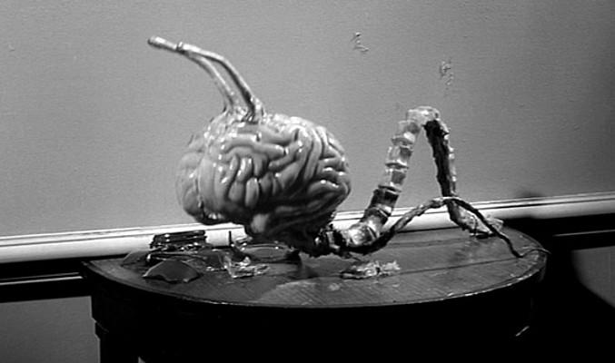 """Szenenfoto aus dem Film """"Ungeheuer ohne Gesicht"""" (Fiend Without a Face, GB 1958) von Arthur Crabtree; ein Gehirn"""