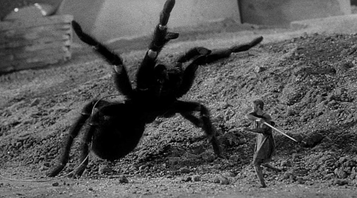 Grant Williams kämpft gegen die Spinne in Die unglaubliche Geschichte des Mr. C (The Incredible Shrinking Man, USA 1957)