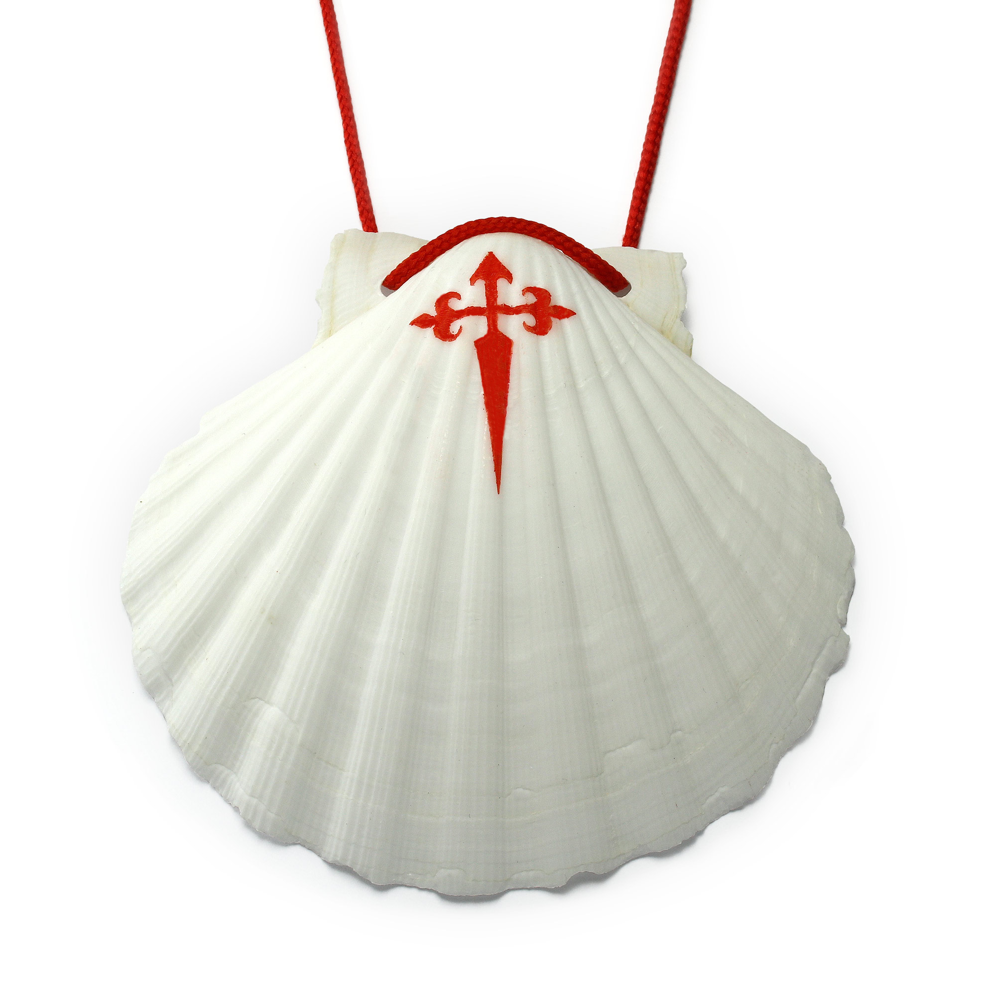scallop shells Way of St. James