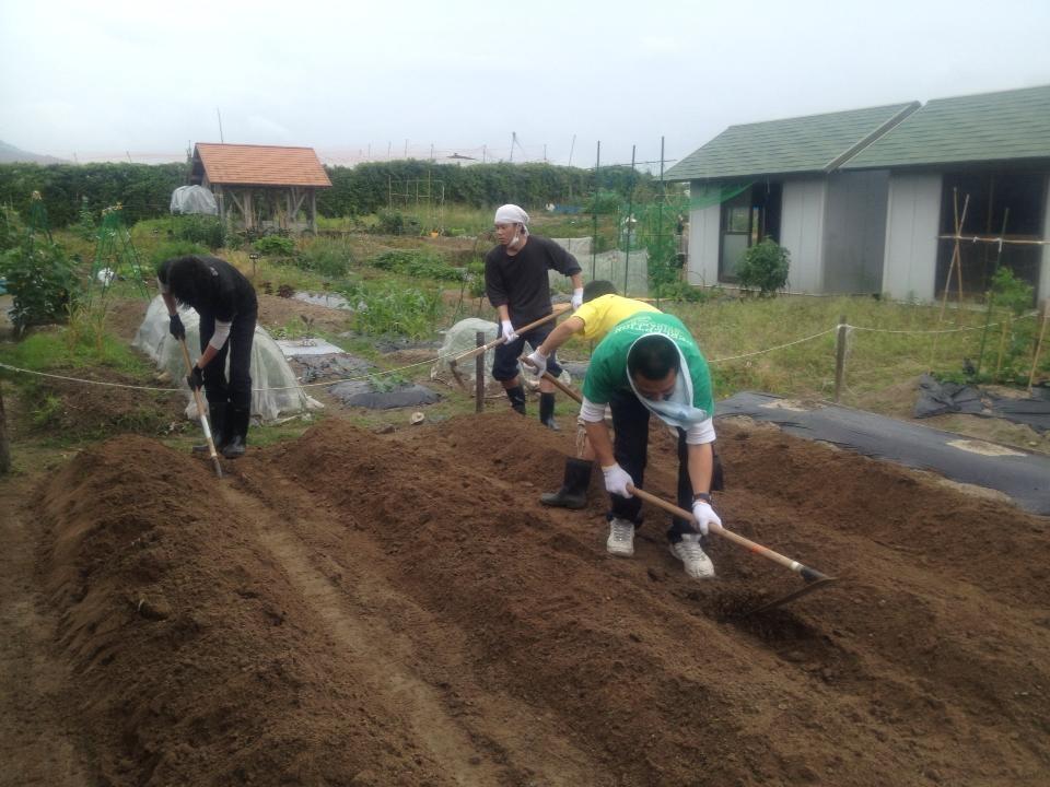 農作物作り