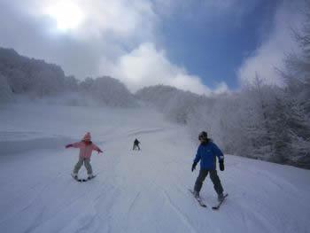 スキーをする子供たち
