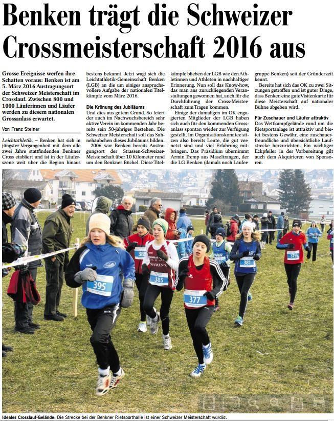 Pressebericht in der Südostschweiz vom 20.12.2014