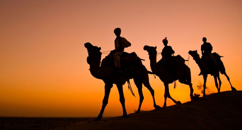 Kameltour Rajasthan