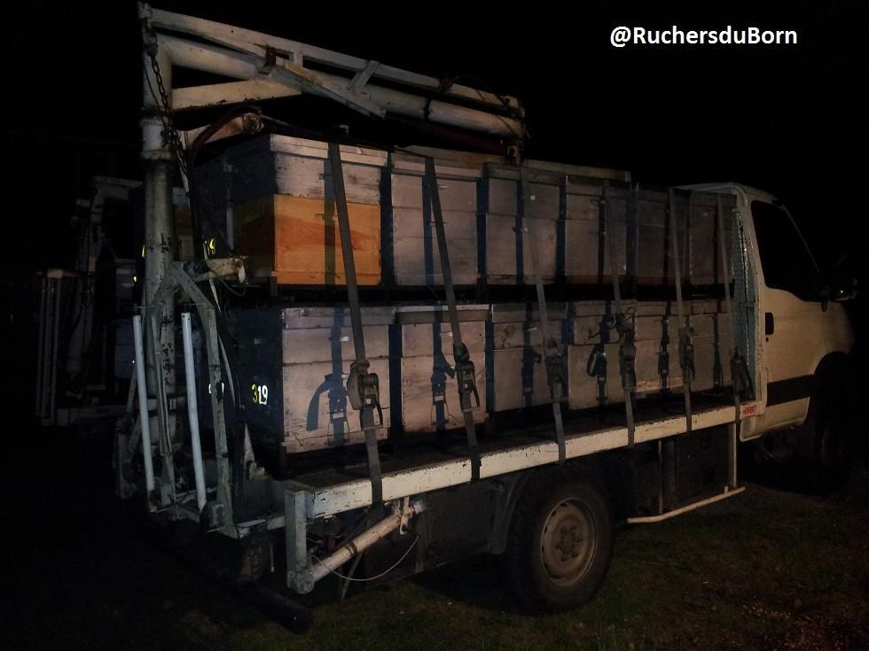 ruches chargées sur le plateau du camion (transhumance)