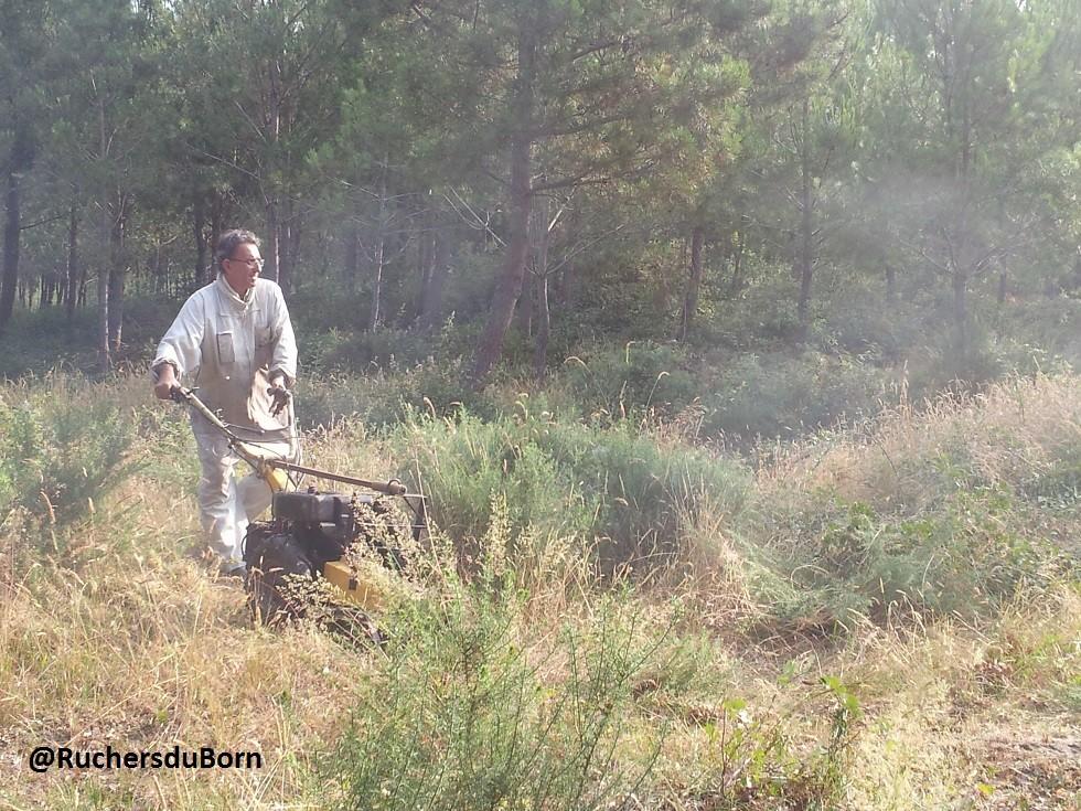 nettoyage d'un rucher (juin)