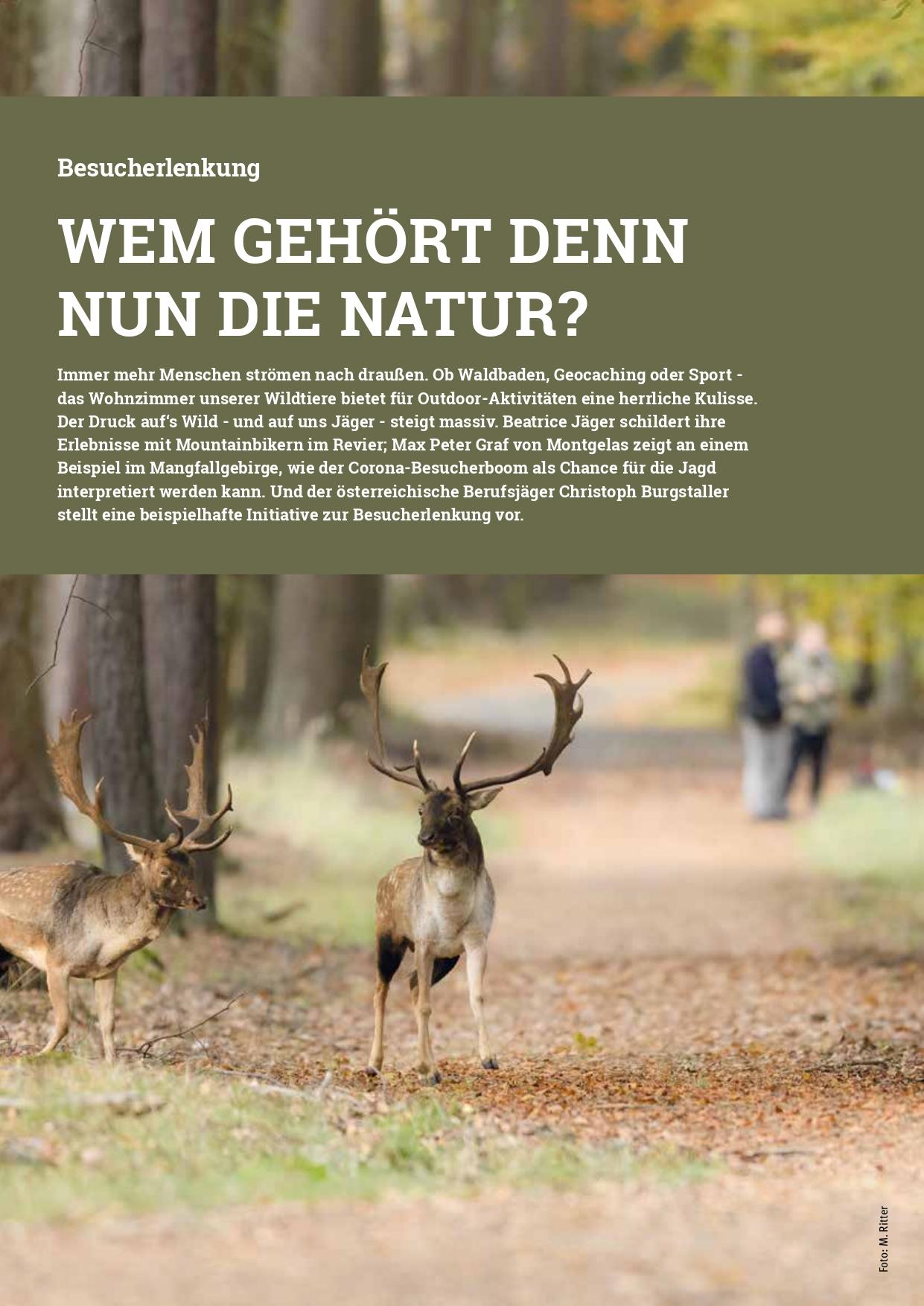 """Leitbild des Themenschwerpunkts """"Wem gehört denn nun die Natur"""" in Jagd in Bayern Nr. 3 - März 2021"""