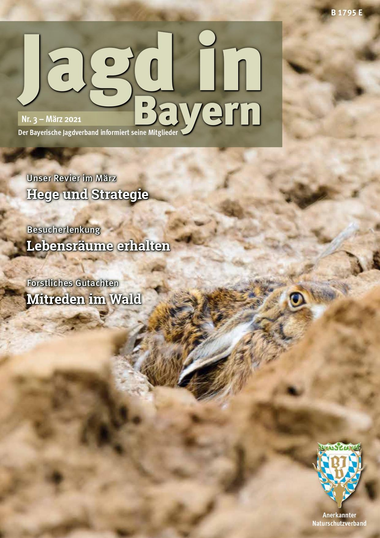 Titelseite der Jagd in Bayern Nr. 3 - März 2021