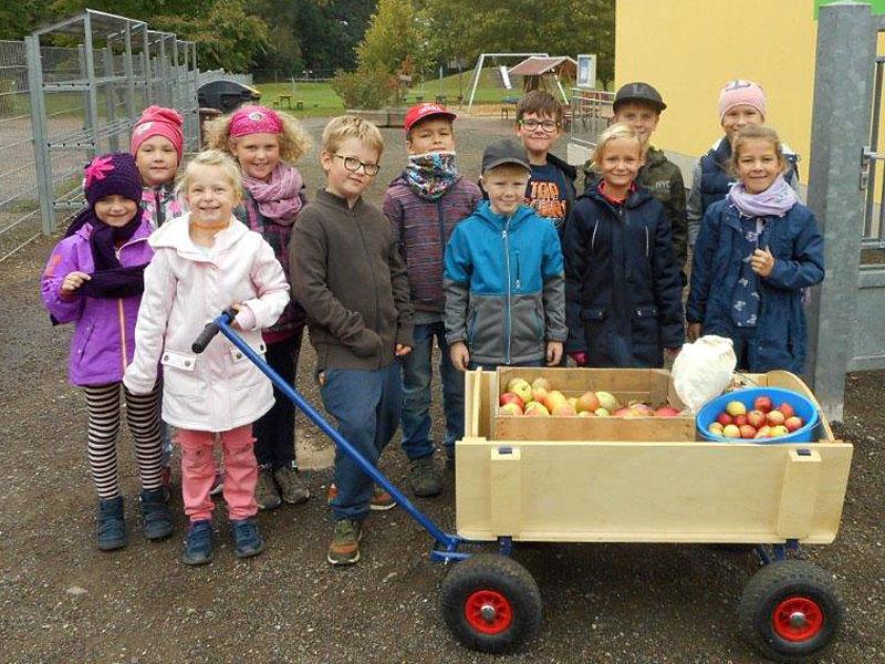 GrundschülerInnen liefern Äpfel an und ...