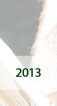 Fotos 2013