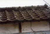 築年数の経過に伴う屋根全体の劣化