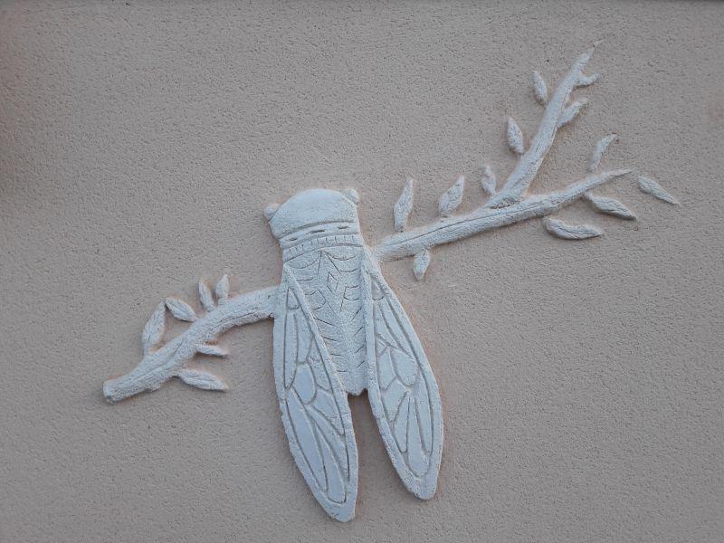 Cigale sculpté main sur fond enduit gratté
