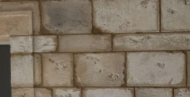 Enduit décoration pierre du Gard en intérieur