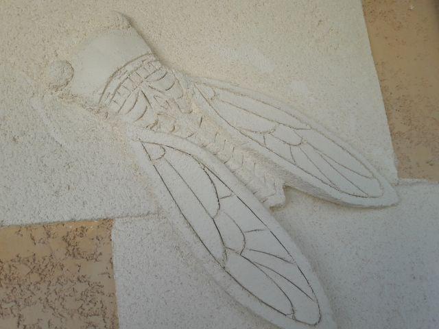 Cigale scuplté sur pierre de taille