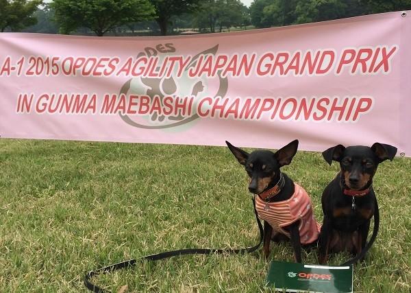 2015.5.9-10 憧れのジャパングランプリの舞台へ。2日間で5走しました(サン)。