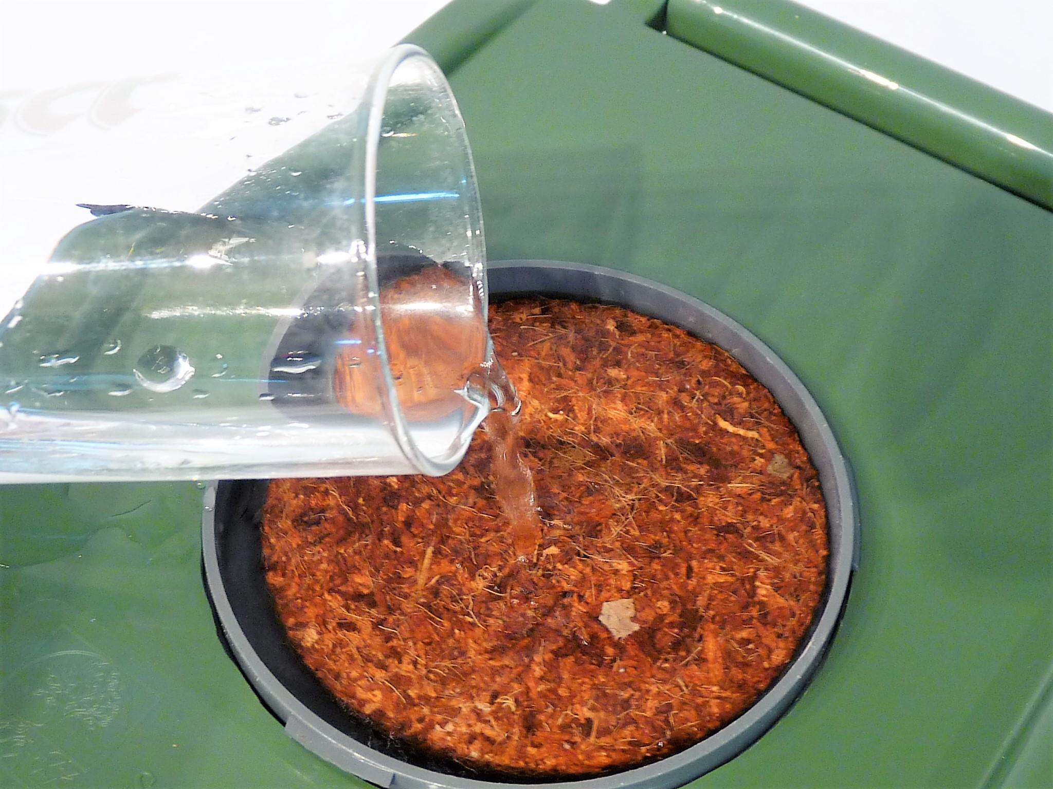 2. Indoor-Filter beginnt zu quellen