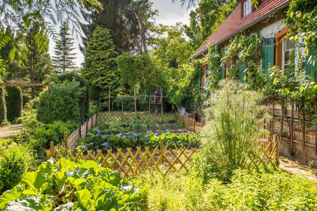 Gemüsegarten Altes Forstamt im Teutoburger Wald