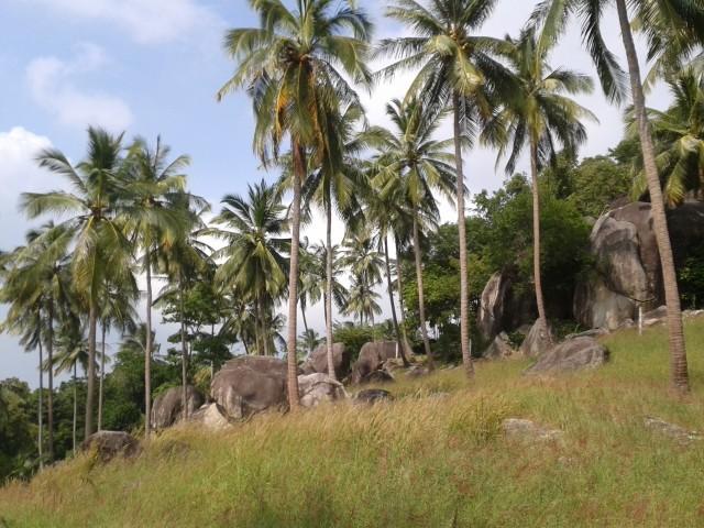 Rundfahrt auf der Insel mit Motorollern