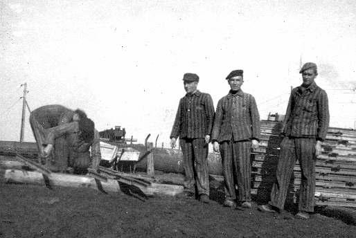 KZ-Häftlinge in einem Wüstewerk beim Verlegen von Feldbahngleisen, 1944