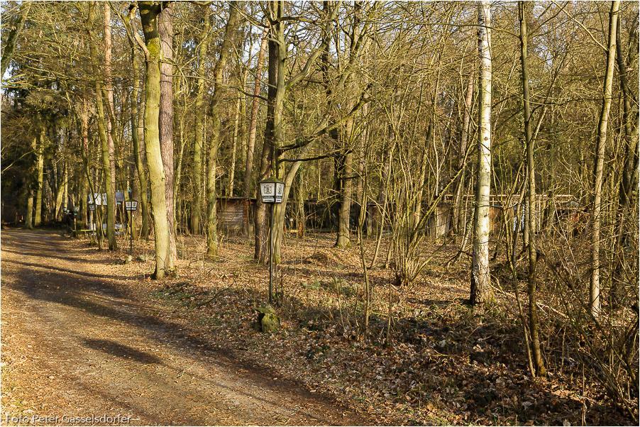 Die Volieren liegen mitten im Wald.