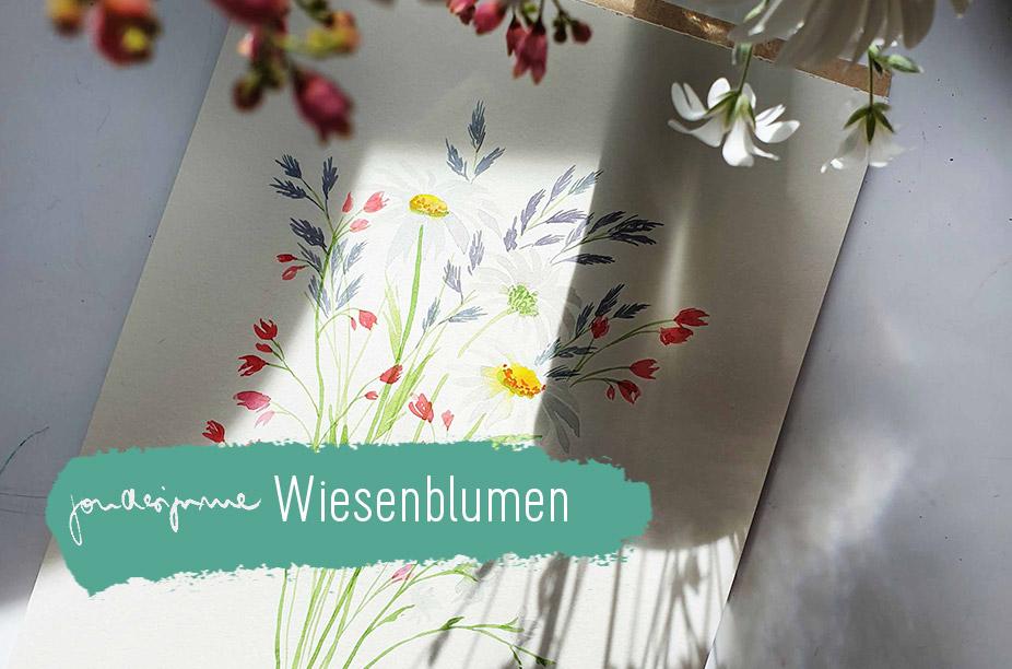 Livestream Wiesenblumen