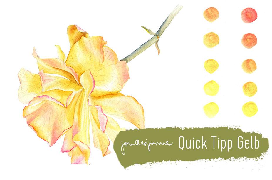 Quick Tipp Farben: Gelb
