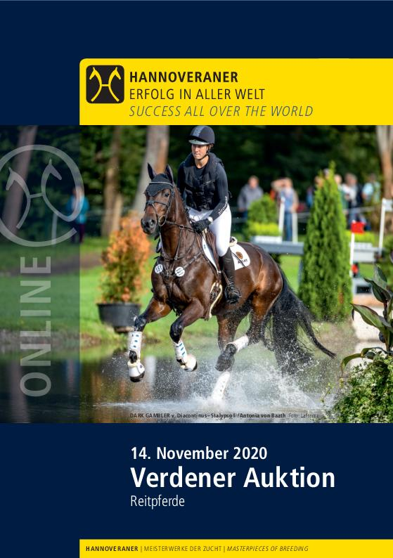 Hanoverian, sprothorse, dressage horse, showjumping horse, eventer, hunter, buy horse, horses for sale, GHI, German Horse Industry