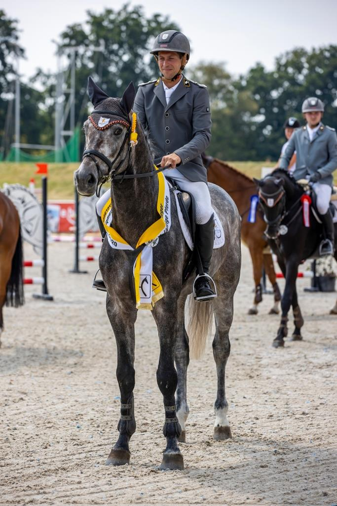 Hannoveraner, Hanoverian, Dressage Horse, Showjumping Horse, horses for sale, buy horse, GHI member, Champion