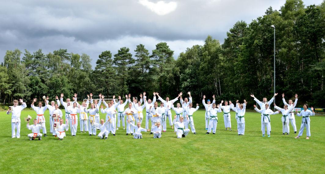 Wie Karate zu den Sportfreunden Heilshorn kam
